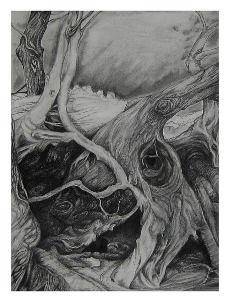 "A Lot Going On - 18 x 14.5"", Charcoal and Pencil on 300 # Water Color Paper, 2011"