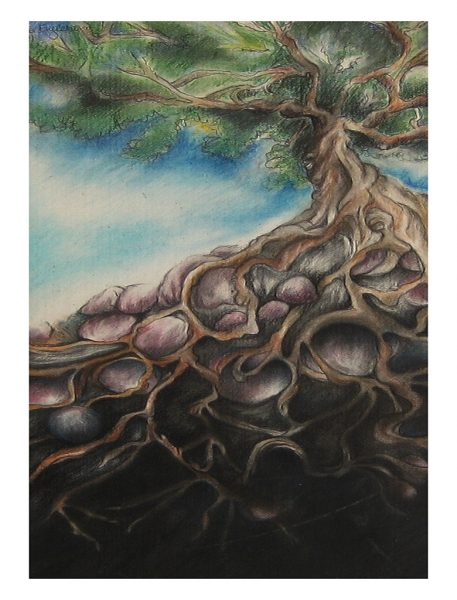 "Above and Below Oak -19 x 10"", Chalk Pastel on Poster Board, 1990"
