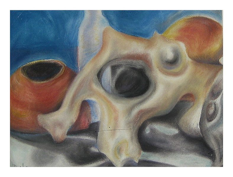 "Bone Eyes -15 x 10"", Chalk Pastel on 300# Watercolor Paper, 2011"