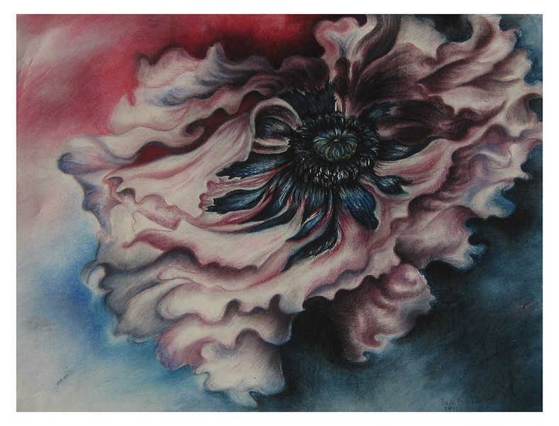 "Floating Poppy - 24 x 22"", Chalk Pastel on 140# Water Color Paper, 1998"